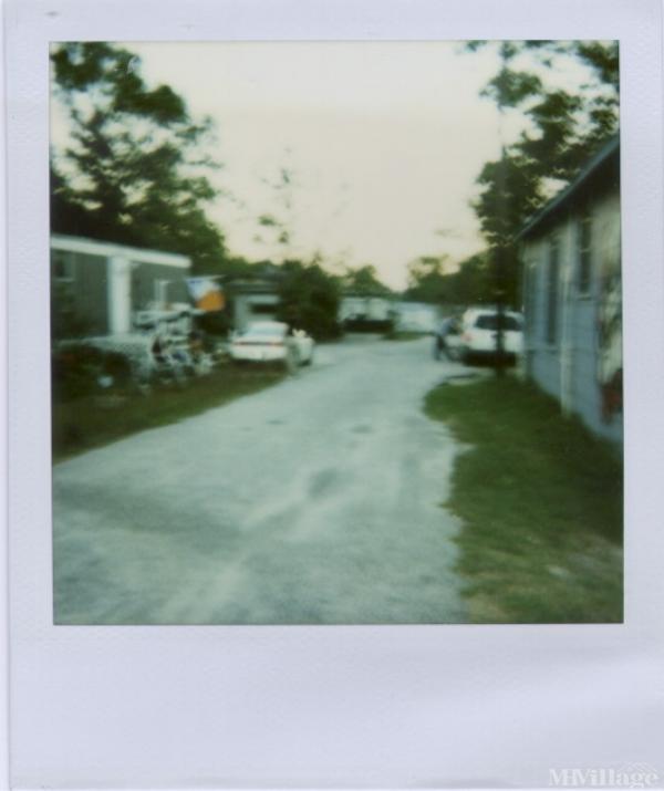 Photo of Grant Park, Wilmington, NC