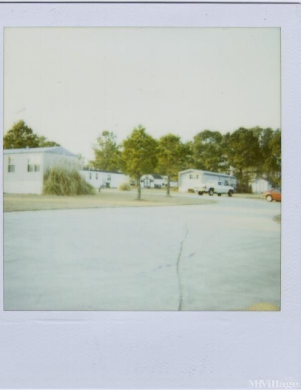 Photo of Rustic Ridge, Simpson, NC