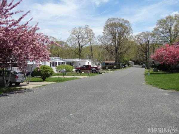 Photo 0 of 2 of park located at 768 E Garden Rd #1 Vineland, NJ 08360