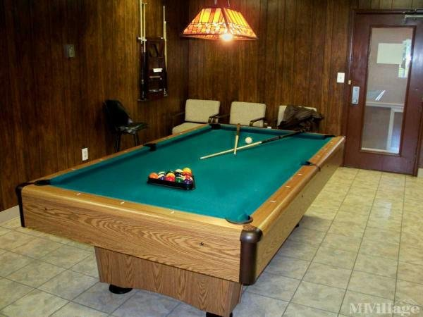 Anyone up for a game of 8 Ball?