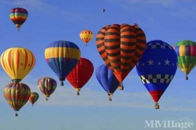 Balloon Fiesta Overhead!