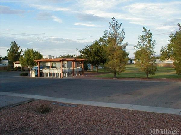 Picacho Vista Homes LLC Mobile Home Park in Las Cruces, NM