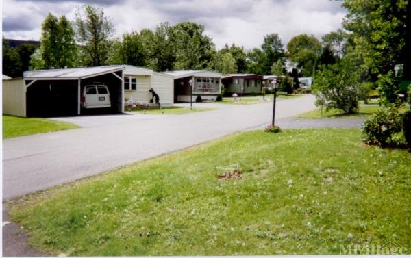 Photo 0 of 1 of park located at 41 Loughlin Rd. Binghamton, NY 13904