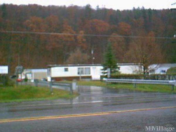 Photo 0 of 2 of park located at 450 Ny Route 369 Port Crane, NY 13833