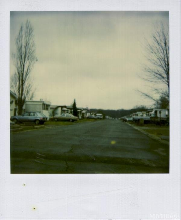 Lakeview Mobile Home Park Mobile Home Park in Cortland, OH