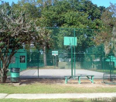 Basketball Court and Picnic Area