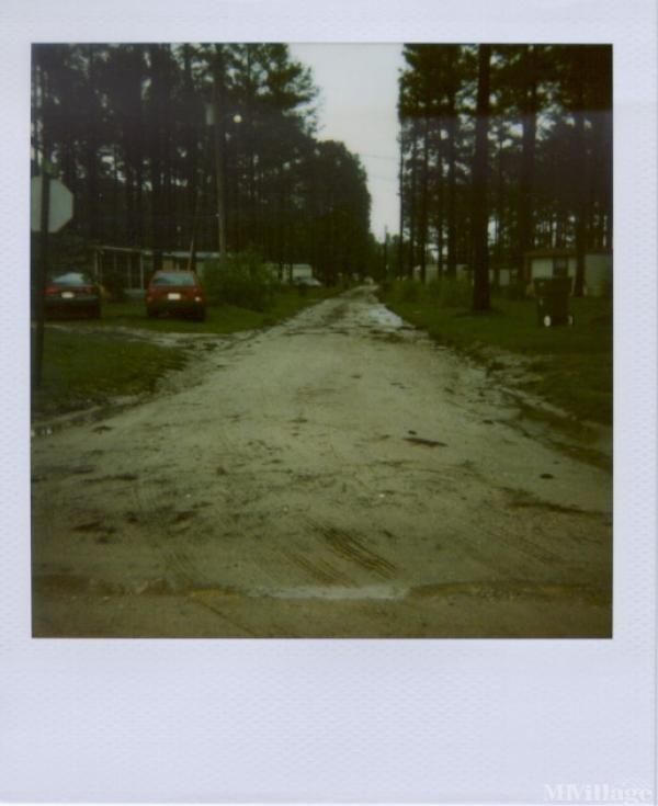 Photo of Williamson Mobile Home Estates, Conway, SC