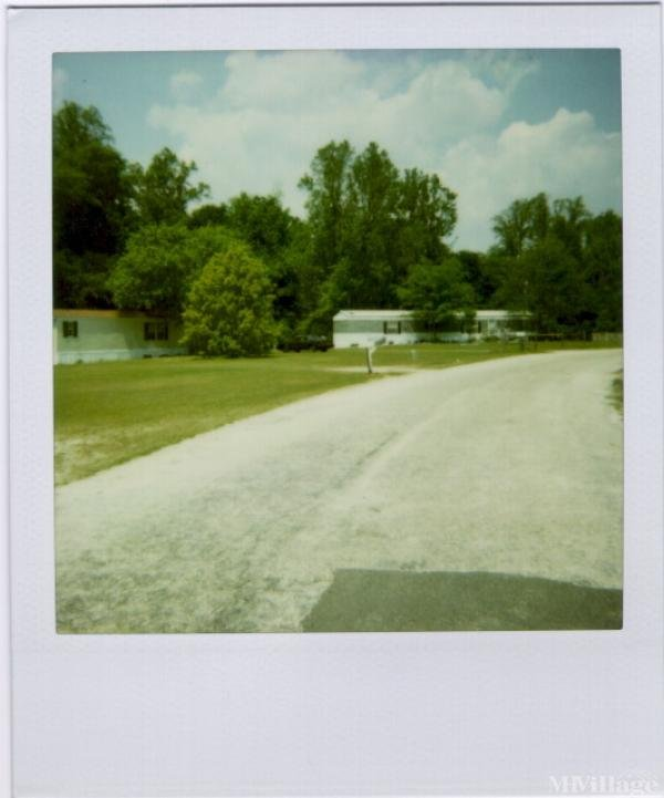 Photo of Spring Branch Mobile Home Park, Florence, SC