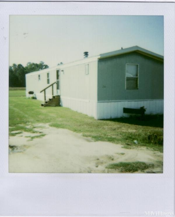 Photo of Kindale Park Sub Division, Kingstree, SC