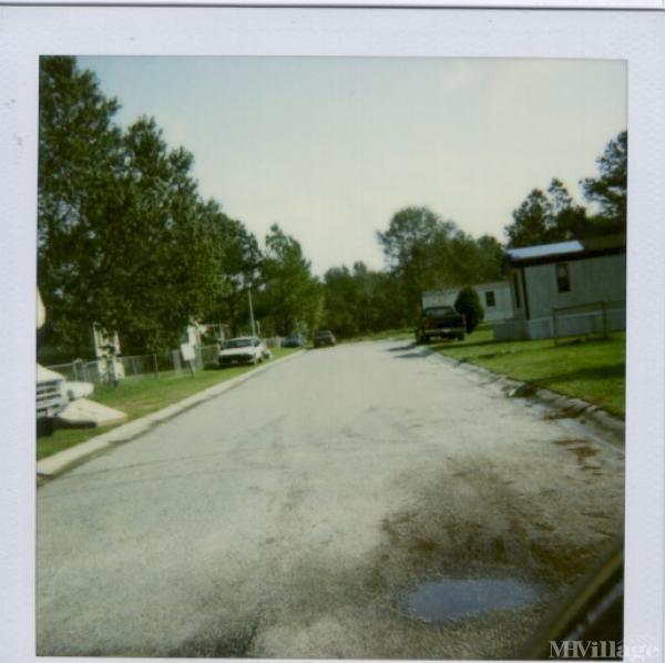 Photo of Stall Mobile Home Park, Charleston, SC