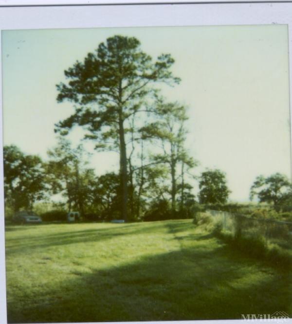 Photo of River Oaks, Beaufort, SC