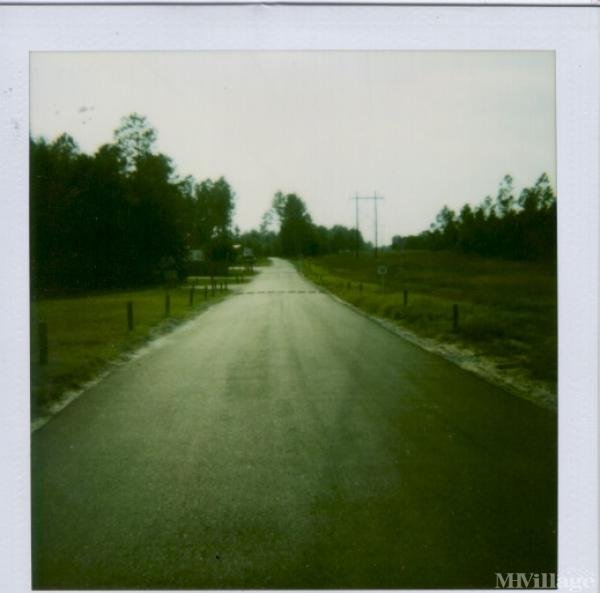 Photo of Hidden Acres Mobile Home Park, West Columbia, SC