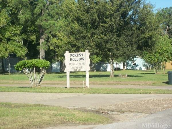 Photo of Forest Hollow, Beaumont, TX