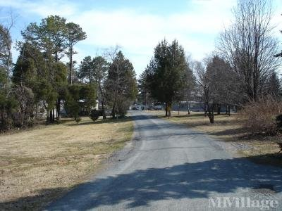 Rural Setting - Pine Grove
