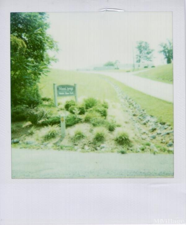 Photo of Mineral Springs Mobile Home Park, Vinton, VA