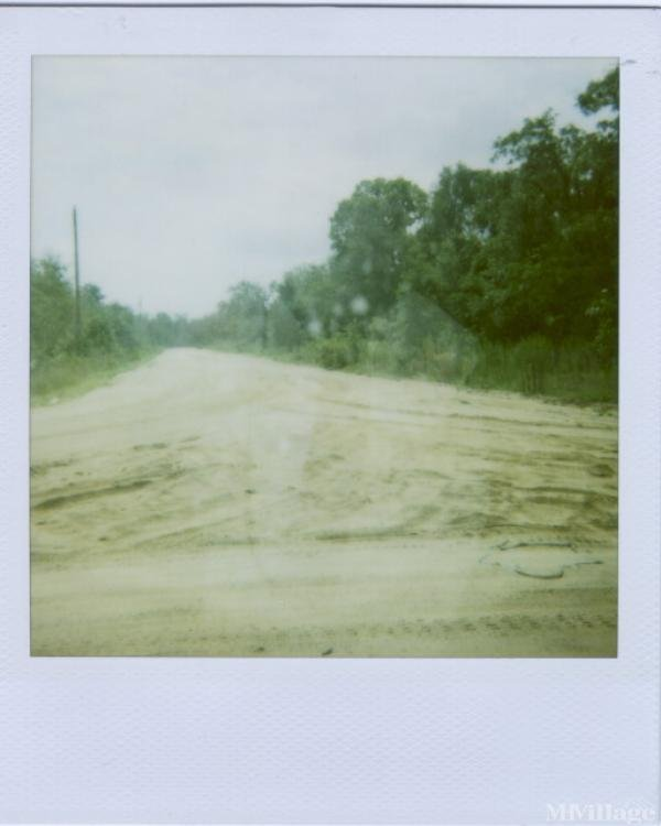 Photo of River Ridge Subdivision, Jesup, GA