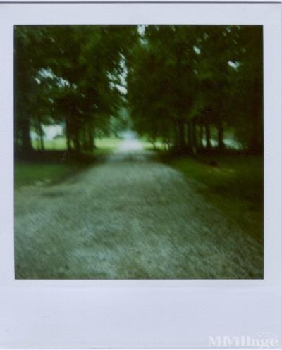 Heath Trailor Park