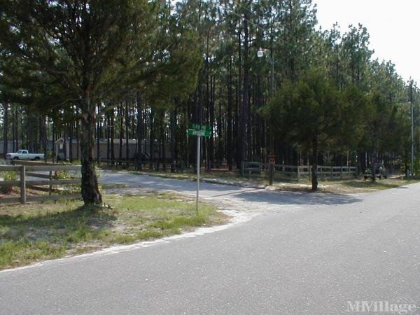 Photo of Ample Pines, Aberdeen, NC