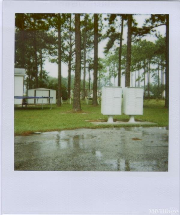 Photo of Southern Pines, Kingsland, GA