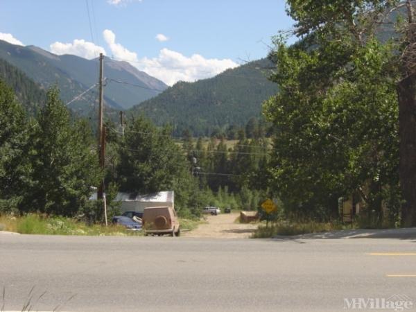 Photo of Silver Spruce, Empire, CO