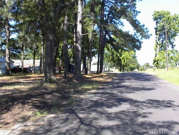 Photo of Country Mobile Home Park, Sulphur Springs, TX