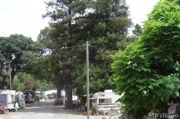 Photo of Penngrove Mobile Home Park, Penngrove, CA
