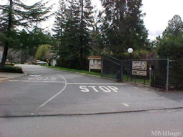 Photo of Sawmill Estates, Paradise, CA
