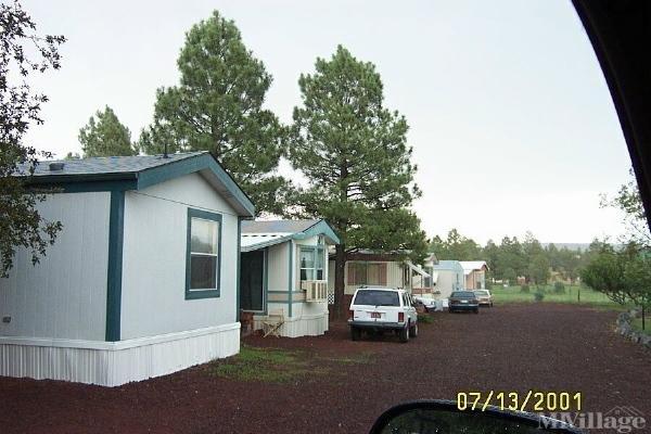 Photo of Homestead Mobile Home Park, Lakeside, AZ