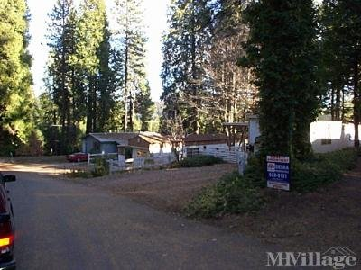 Mobile Home Park in Pollock Pines CA