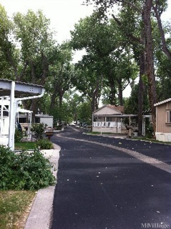 Photo of Cottonwood , Carson City, NV