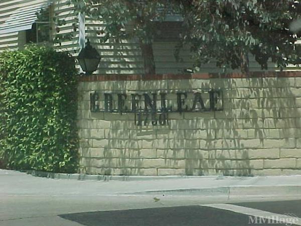 Photo of Greenleaf Park, Costa Mesa, CA