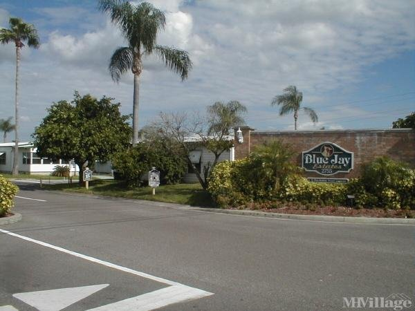 Photo of Blue Jay Estates, Palm Harbor, FL