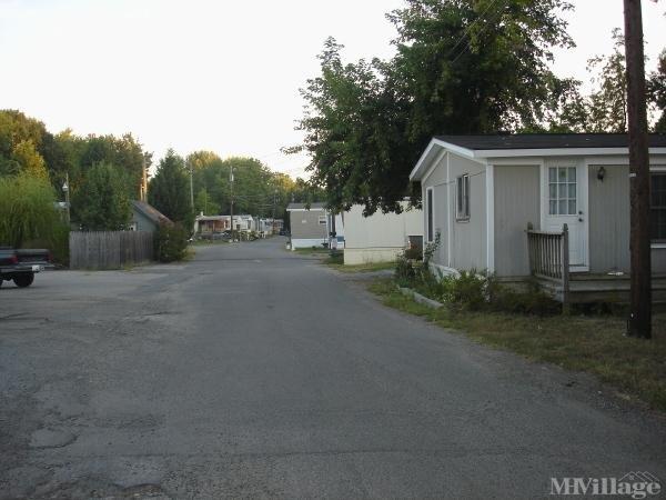 Photo 0 of 1 of park located at 8511 Greenleaf St Alexandria, VA 22309