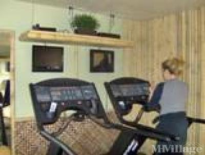 Gym with new equiptment, AC, TV