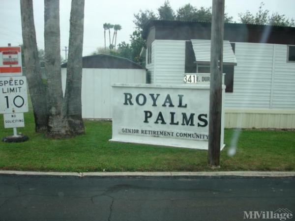 Photo of Royal Palm, Alamo, TX