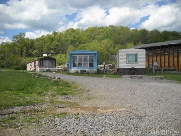 Photo of Twin Oaks Community, Buckhannon WV
