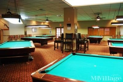 Enjoy Billiards with Leagues