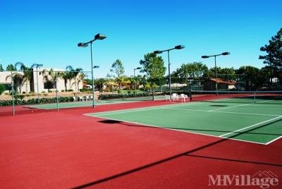 World-Class Tennis Facilities