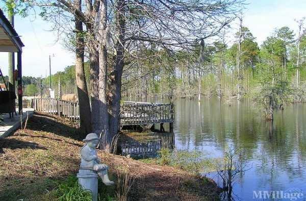 Photo of Martinfield Plantation, Conway, SC
