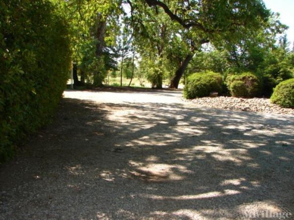 Photo of Topland, Palo Cedro, CA