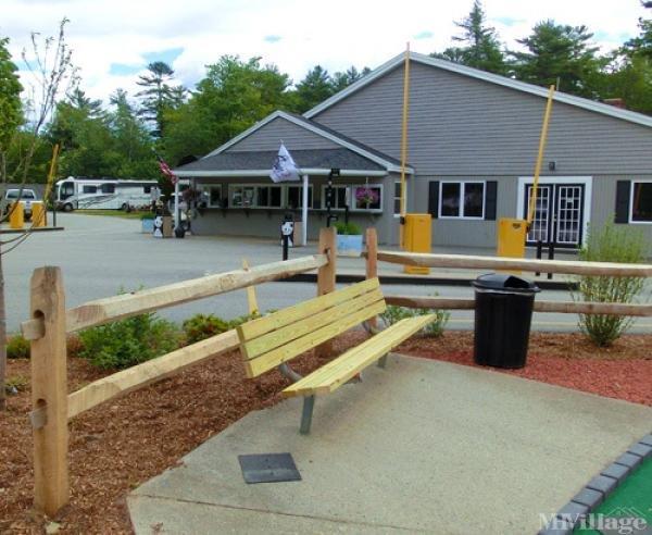 Wild Acres RV Resort