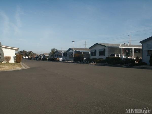 Photo of The Pines Mobile Home Park, Stockton, CA