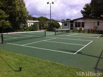Pickleball Courts/lighted!