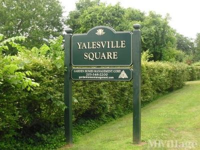 Yalesville Square