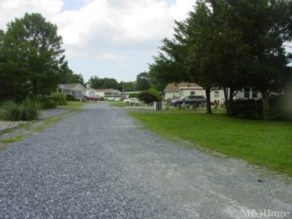 Photo of Massey's Landing, Millsboro DE