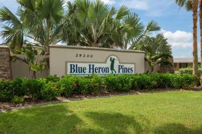 Blue Heron Pines