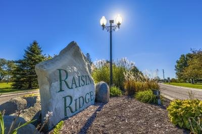 Raisin Ridge