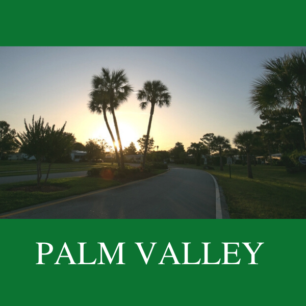 Palm Valley